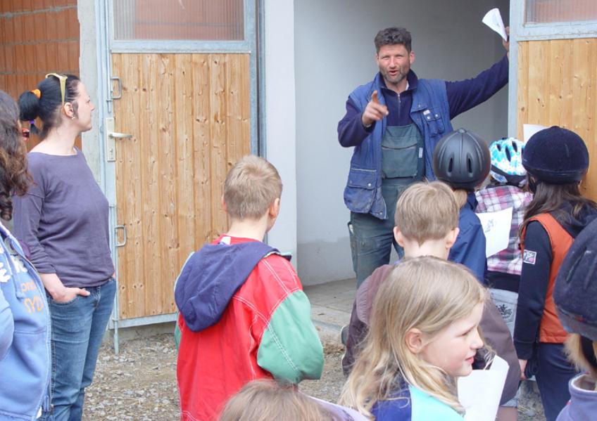 Pferd2 in Projekttag: Auf dem Fohlenhof
